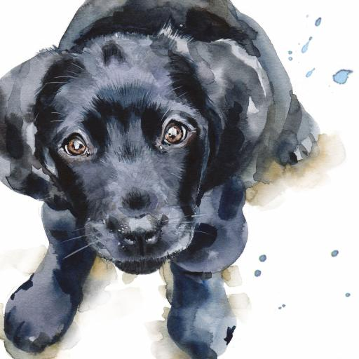 Puppy Dog Eyes Card Collection - Black Labrador Puppy Barney