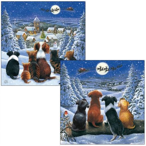 Luxury Christmas Card Pack - Santa's Flight