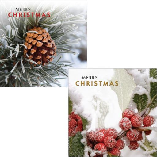 Luxury Christmas Card Pack - Christmas Foliage