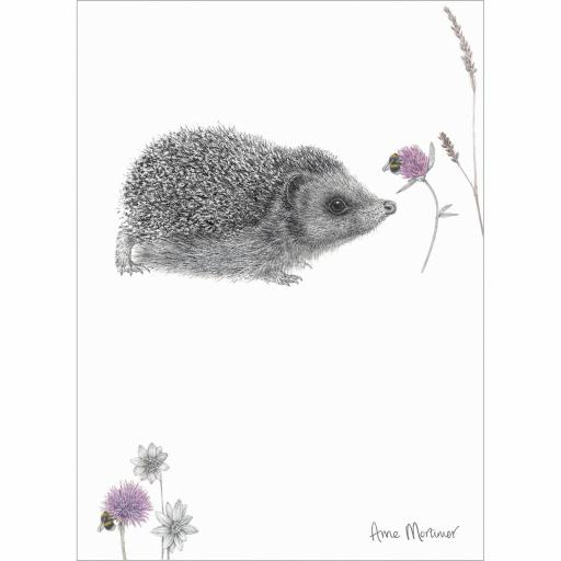 RSPB Card - In the Flowers - Hello Hedgehog
