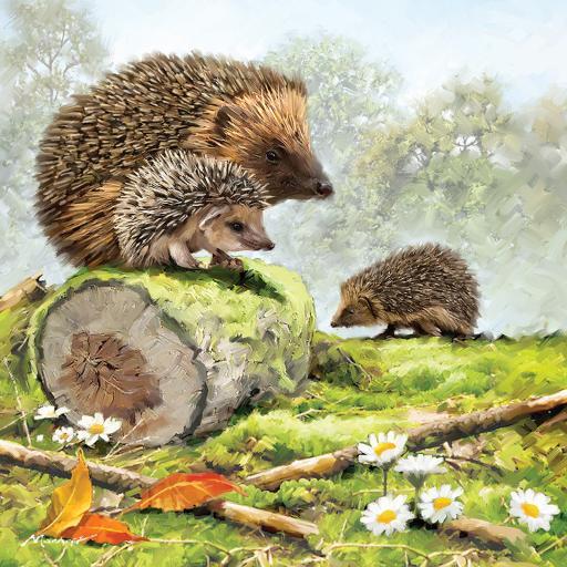 Square Jigsaw - Hedgehog Family