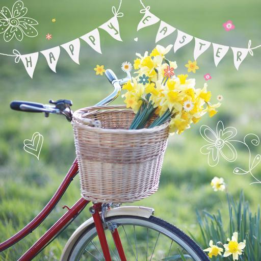 Easter Card Pack - Daffodil Basket