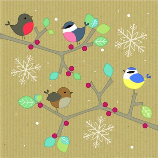 RSPB Small Square Christmas Card Pack - Little Birds