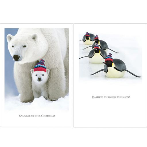 Help For Heroes Christmas Card Pack (Medium) - Snuggly Christmas