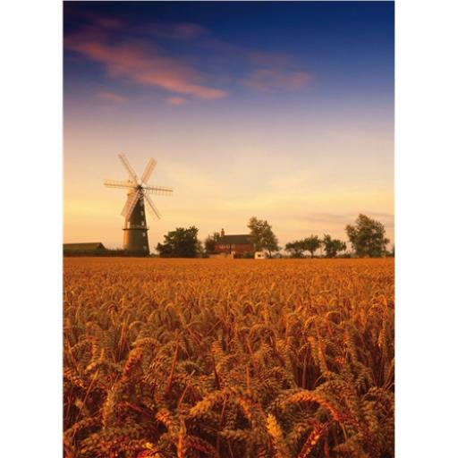 Perfectly Picturesque Card - Sibsey Trader Windmill (Lincolnshire)