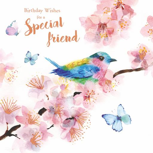 Birthday Treats Card Collection - Birds & Blossom