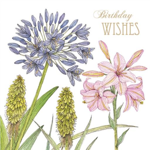 Vintage Garden Card - Agapanthus & Lily