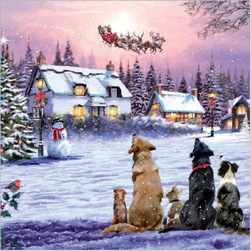 Charity Christmas Card Pack - Santa's Sleigh