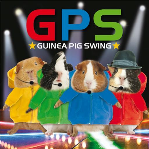 Crazy Crew Card - Guinea Pig Swing (Blank)