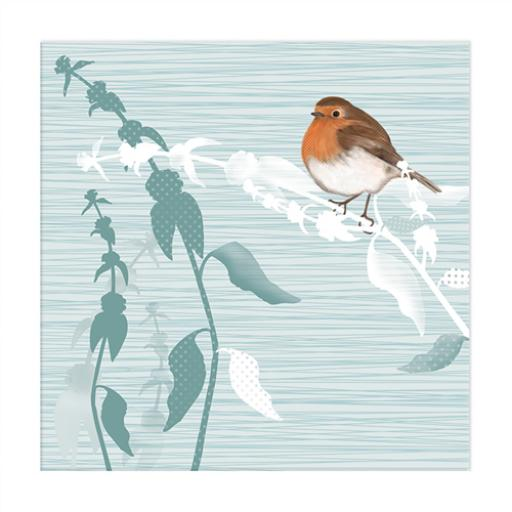 RSPB Nature Trail Card - Robin Redbreast