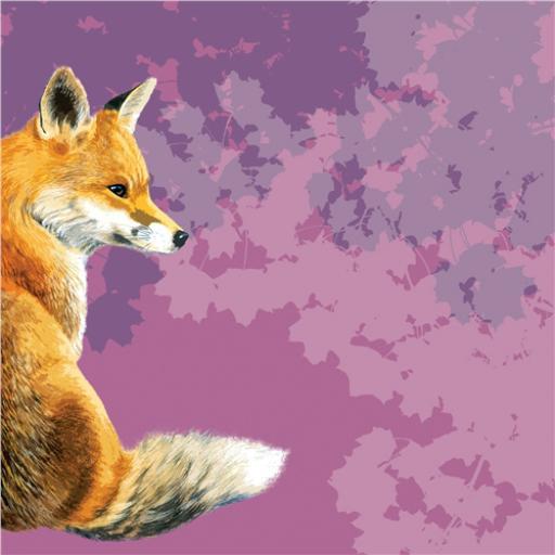 RSPB Card - Fox