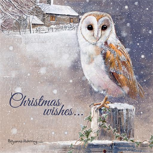 Charity Christmas Card Pack - Christmas Wishes
