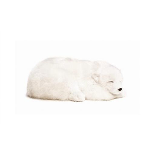 Precious Petzzz - Polar Bear