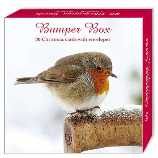 Assorted Christmas Cards - Merry Robins