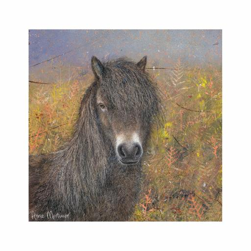 Enchanted Wildlife Card - Exmoor Pony