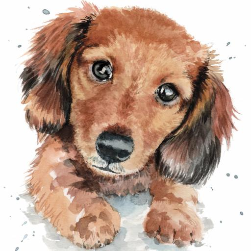 Puppy Dog Eyes Card Collection - Dachshund Darcy