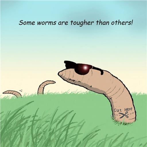 Twizler Card - Tough Worms