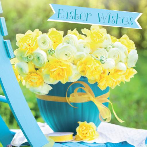 Easter Card Pack - Daffodils