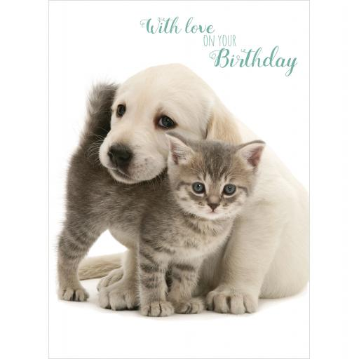 Animal Birthday Card - Lab Pup & Kitten Cuddle