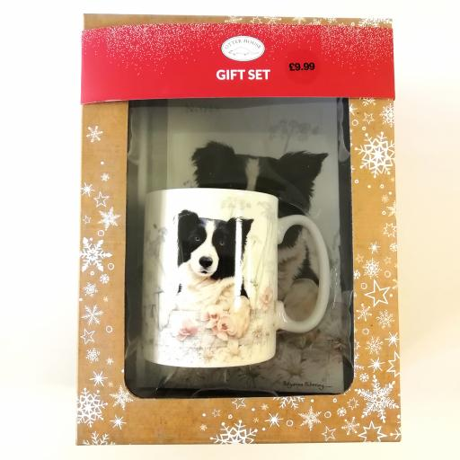 Christmas Gift Box - Border Collie