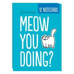75200_SC-Notecard-Wallet_Meow-You-Doing_Box_y.jpg