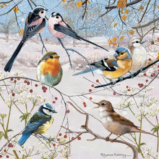 Welsh Christmas Cards (Small) - Christmas Birds