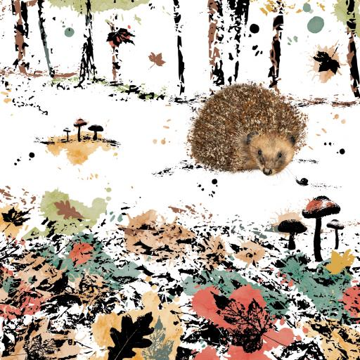 RSPB Field & Forest Card - Hedgehog