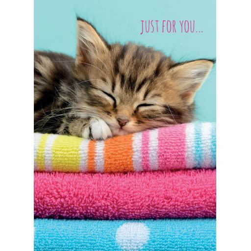 Animal Birthday Card - Sleeping Kitten