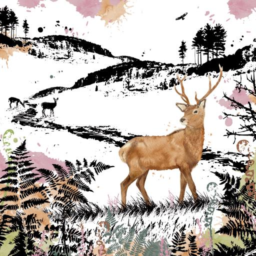 RSPB Field & Forest Card - Stag