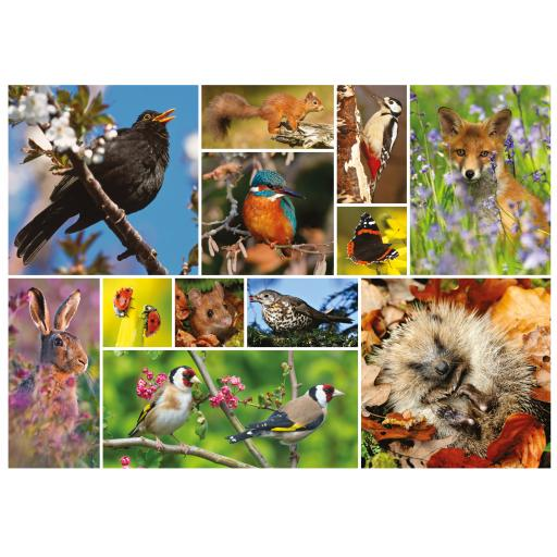 Rectangular Jigsaw - RSPB Great British Wildlife