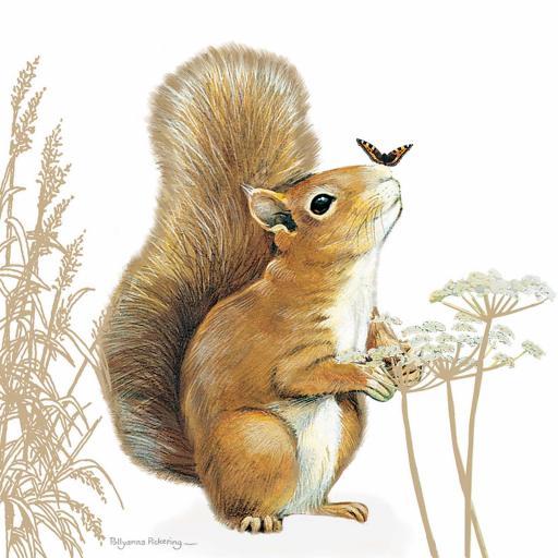 Pollyanna Pickering Countryside Collection Card - Squirrel
