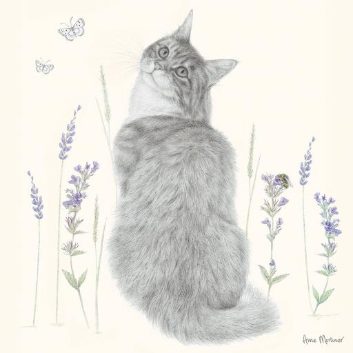 Quayside Gallery Card Collection - Cat Amongst Flowers