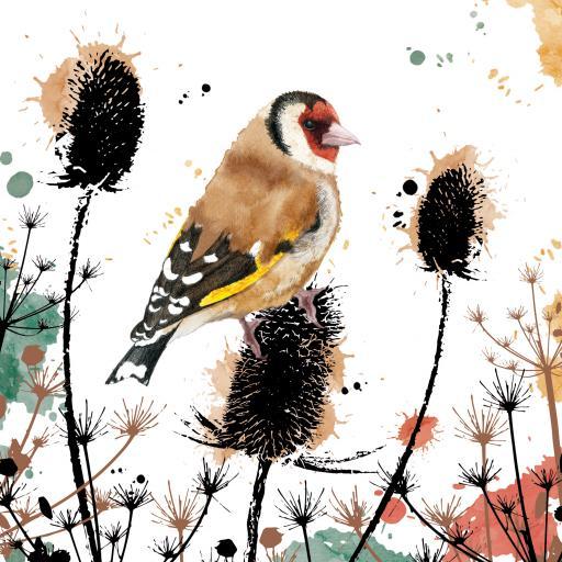 RSPB Field & Forest Card - Goldfinch
