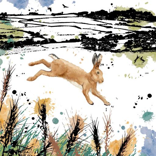 RSPB Field & Forest Card - Hare