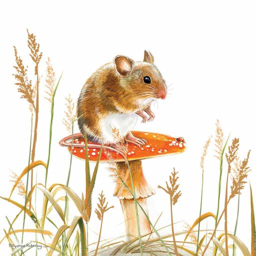 Pollyanna Pickering Countryside Collection Card - Mouse