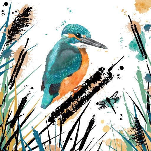 RSPB Field & Forest Card - Kingfisher