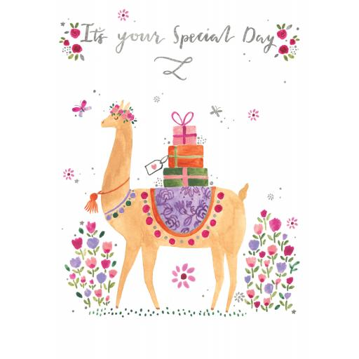 Marie Curie Happy Days Card Collection - Delivered By llama