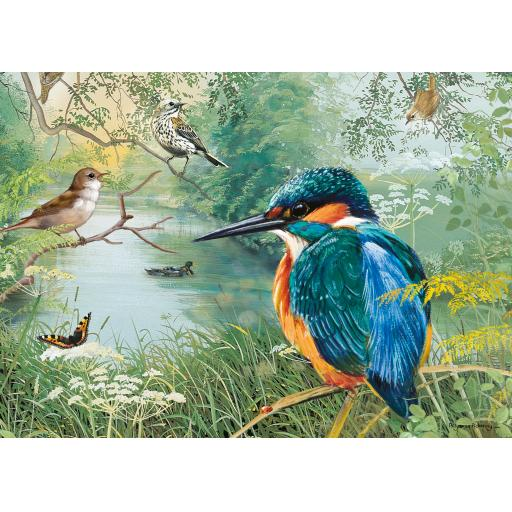 Rectangular Jigsaw - Nature Reserve