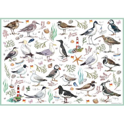 500 Piece Jigsaw - Madeleine Floyd Seabirds