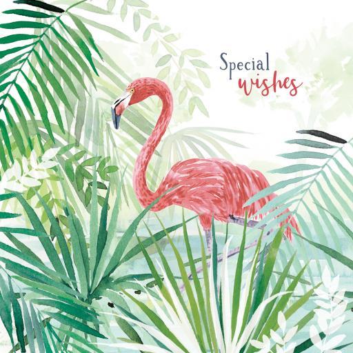 Wild & Serene Card Collection - Flamingo