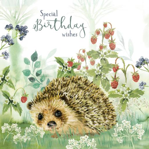 Wild & Serene Card Collection - Hedgehog