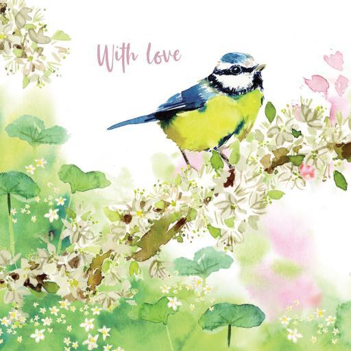 Wild & Serene Card Collection - Blue Tit