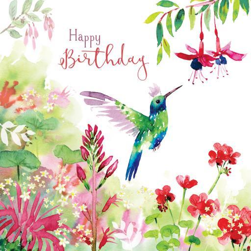 Wild & Serene Card Collection - Humming Bird
