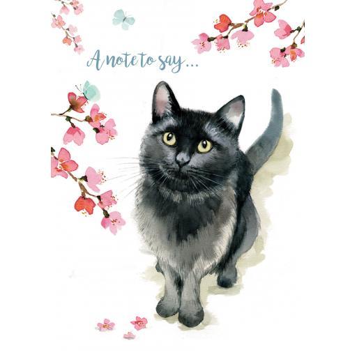 Notecard Pack - Little Black Cat