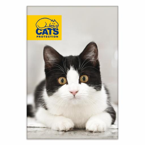 Cats Protection Magnet - Black & White Cat