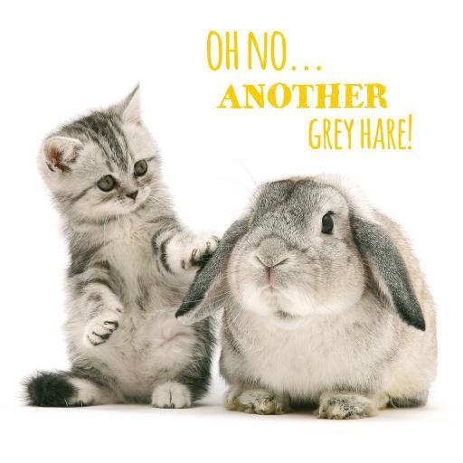 Pet Pawtrait Card - Grey Hares (Birthday Card)