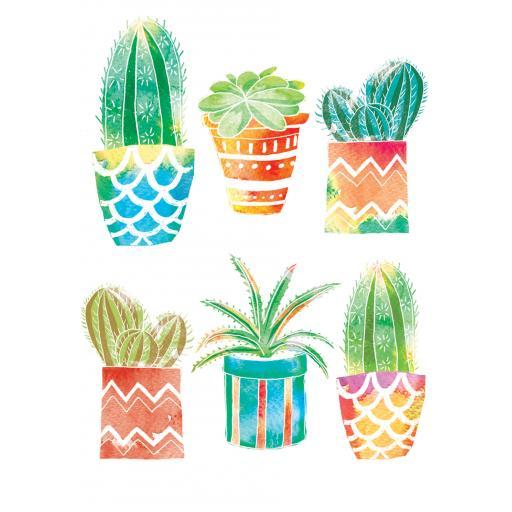Notecard Pack - Cacti