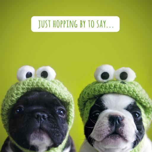 Pet Pawtrait Card - Kermit Pups (Birthday Card)