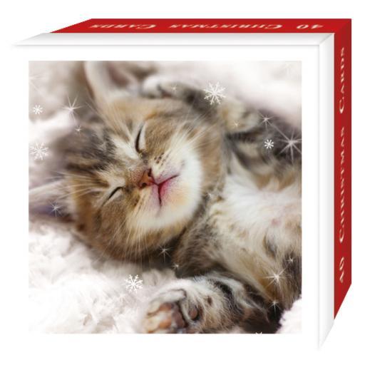Assorted Christmas Cards - Christmas Cats