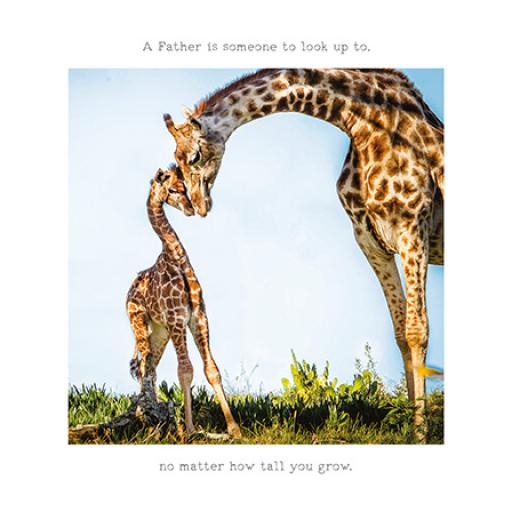 Fathers Day Card - How Tall You Grow